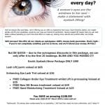 Exotic Eye Lash and Brow Package